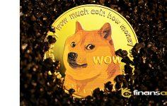 Doge coin Çakıla Bilir